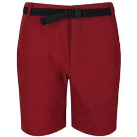 Regatta Highton Short Homme, delhi red